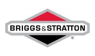 Briggs & Stratton Motoren
