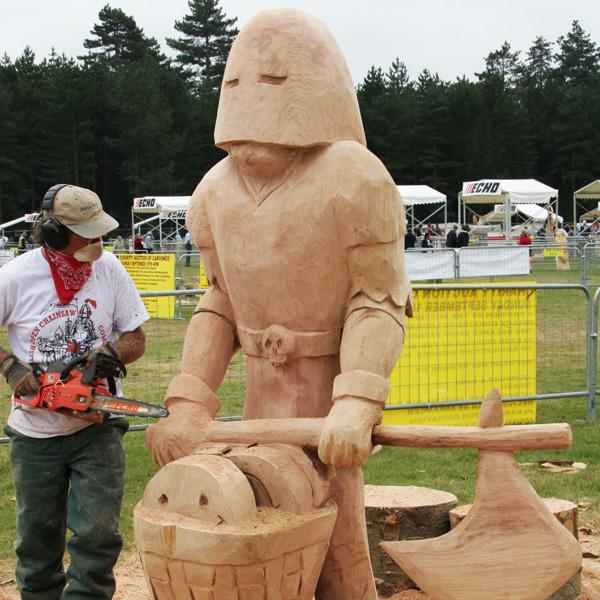 Echo motorsäge kettensäge cs wesc carving